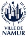Namur logo site